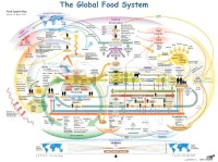 reproduced from http://llccgreencenter.blogspot.com.au/2010/07/global-food-system.html